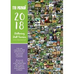 Kalendarz ścienny z bulterierami 2017