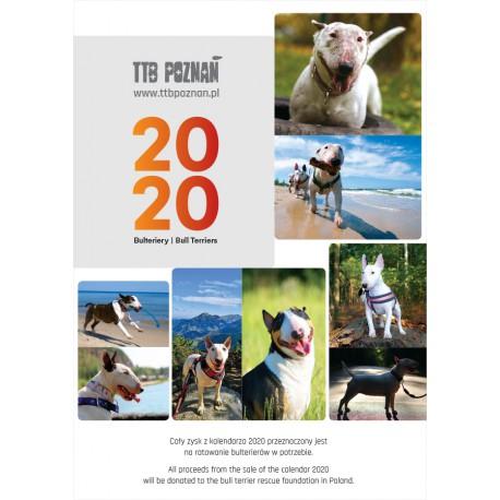 Kalendarz ścienny z bulterierami 2019